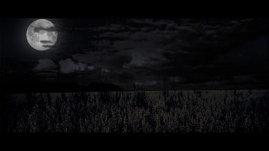 ImiL-164-Jour-Nuit-Nuit-B-Small-01.jpg