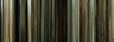MovieBarCode-No_Country_For_Old_Men-01.jpg